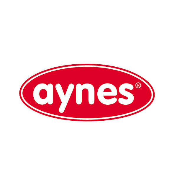 images/brand/aynes.png
