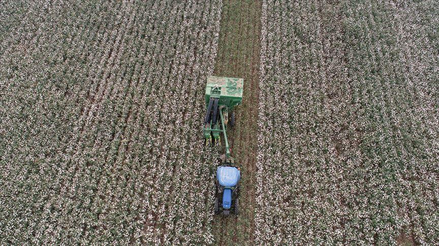 Çiftçilere 'multispektral kameralı İHA'lar' kolaylık sağlayacak