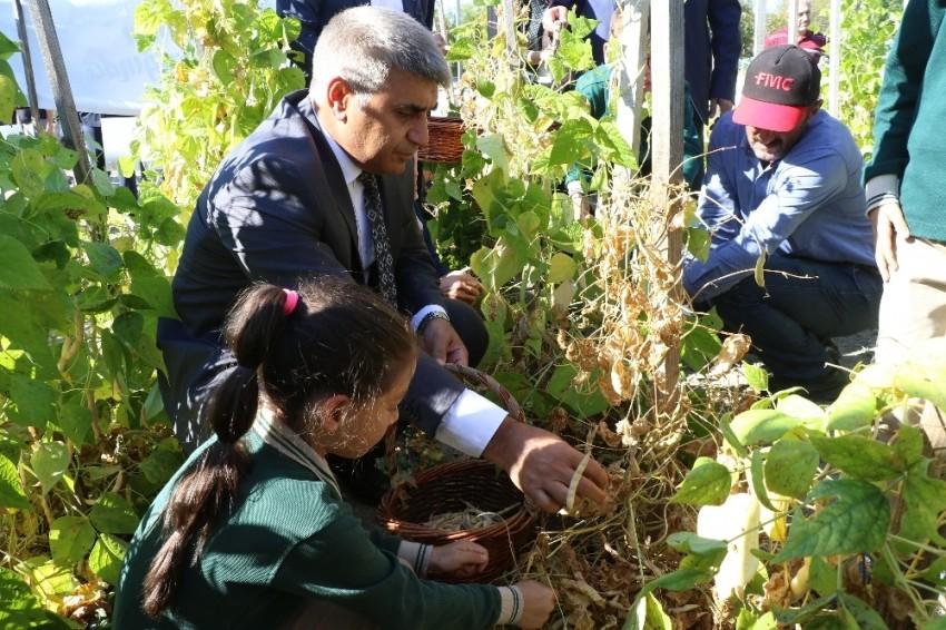 Karabük'te yerli tohumla 12 çeşit ürünün üretimi yapıldı