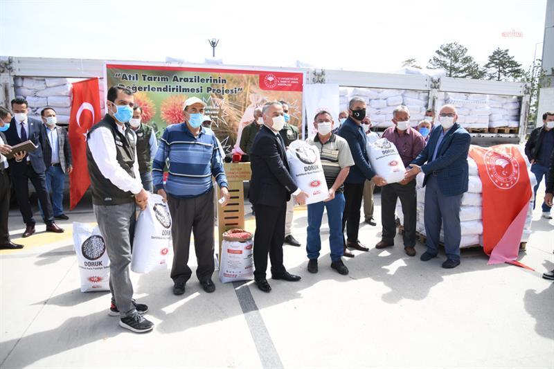 Kayserili çiftçiye 50 ton tohum… 800 çiftçiye yerli kurufasülye tohumu dağıtıldı…